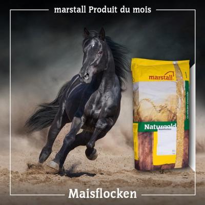 Naturgold Maisflocken